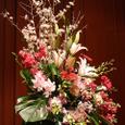 20070301flowers